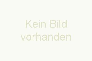 """Bild 12: Ferienhaus """"Finja"""", Urlaub mit Hund, Kamin, Zaun, - 4 P., Ostsee, Bodden"""